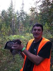 Beau coq (Les Perdrioles) Tags: guide de chasse au dindon sauvage du québec gélinotte huppé