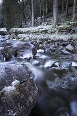Icy Blast. (CamraMan.) Tags: ashgill cumbria garrigill water river stones trees winter longexposure leepolariser canon6d canon1740mmlusm manfrotto ©davidliddle ©camraman outandabout