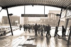 Ruhr-Universität (2012) (Nilfisk) Tags: ruhruniversität 50mm querenburg pentax uni ruhruni mz5 rub universität bochum fa5014 xp2 ilford film ilfordxp2super