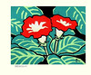 Gloxinia (Japanese Flower and Bird Art) Tags: flower gloxinia sinningia speciosa gesneriaceae saburo miyata modern woodblock print japan japanese art readercollection