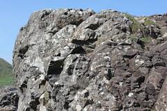 IMG_3608 (avsfan1321) Tags: ireland northernireland countyantrim unitedkingdom uk giantscauseway causewaycoast wildatlanticway basalt rock stone blackbasalt column columnarjointing columnarbasalt ocean atlanticocean landscape