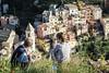 Contemplation of the village of Manarola - Cinque Terre - Liguria - Italy (PascalBo) Tags: nikon d500 europe italia italie italy liguria ligurie laspezia cinqueterre nationalpark parcnational manarola man homme boy garçon outdoor outdoors pascalboegli