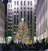 Christmas Colours - The Tree at Rockefeller  Center (Pushapoze (nmp)) Tags: newyorkcity xmas2017 rockefellercenter tree arbresdenoel crowd foule bazaar