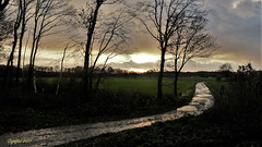November near Renswoude. (Cajaflez) Tags: renswoude autumn autun herfst herbst wet nat bomen silhouetten silhouets pad mud modder ngc coth5