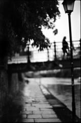 La tête ailleurs (Rachelnazou) Tags: caffenol blackwhite washi film