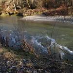 wildes Wasser 001 thumbnail
