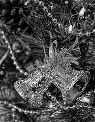 Silver Bells & Bokeh-HMBT! (Jo Zimny says: Happy Earth Day!) Tags: monochromebokehthursday silverbellsandbokeh silver bells bokeh tree christmas garland