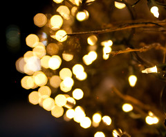 Bright Bokeh (J.R. Rondeau) Tags: rondeau yellowknife nt christmas christmaslights christmasdecorations bokeh colours colors canoneos tamron2875 photoshopelements10