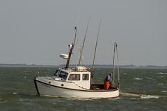 ...der weisse Hai vor Sylt (karstenniehues) Tags: sylt insel nordfriesland nordsee meer wasser strand schiffe hai shark white