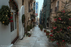 New Year in Valletta (freshandfun) Tags: christmas christmastree decoration festive outdoor
