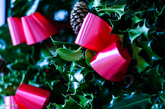 Christmas Wreath (BGDL) Tags: lightroomcc nikond7000 bgdl niftyfifty afsnikkor50mm118g ivy pinecones ribbons christmaswreath coloursofchristmas saturdaytheme flickrlounge