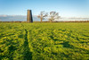 furrow (stevefge) Tags: 2017 autumn beverley uk yorkshire eastyorkshire westwood mill windmills tower trees bomen reflectyourworld green landscape shadows