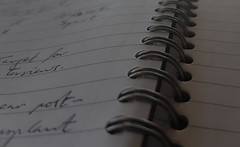 Momentary Lapse of Concentration (during a meeting...) (Michael C. Hall) Tags: notebook notes writing handwriting keywords spiral wire