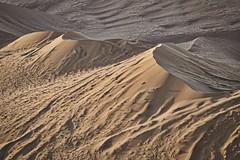 Sand Castles (gecko47) Tags: dunes aerialshot helicopter sesriem sossusvlei namibnaukluftpark desert namibdesert crests drifts namibia