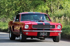 JGU 514C (Nivek.Old.Gold) Tags: 1965 shelby ford mustang gt 350 5000cc