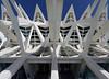frame (ohank1951) Tags: symmetry symmetrie whale skeleton organic abstract architecture geometry geometrie concrete lines steel cityofartsandscience ciudaddelasartesyciencias cac calatrava valencia spanje spain canoneos80d efs1022mmf3545usm