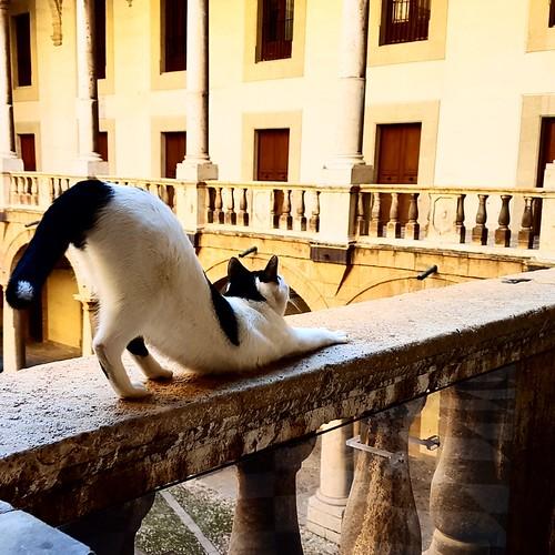 Palermo: incontri a Palazzo dei Normanni