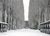 First snow (katrinchen59) Tags: snow winter snowing trees bridge schnee dezember bäume allee winterlandschaft sneeuw winterwonderland winterlandschap weather winterweather wetter winterwetter