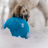 the important business continues, despite the weather - job done! (grahamrobb888) Tags: nikon nikond800 d800 nikkor nikkor20mmf18 winter white woods wideangle cold snow snowwoods birnamwood birnam perthshire scotland quiet tranquil zac dog pet ball blue fun furry busy whatido