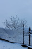 Tree fence ice (zuhmha) Tags: bulgarie bulgaria winter hiver totalphoto tree sky neige snow fence grille grillage barrière campagne camapin mogilovo landscape horizon paysage