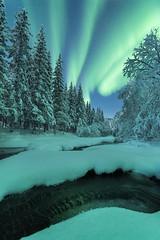 """Wonders of winter"" (Ronny Årbekk - http://arcticphotography.no) Tags: scenic earthnight ngc cffaa specland flickrsbest auroraborealis northernlights nordlys norrsken arctic norway norge nordnorge norwegen night nightphotography ronnyårbekk ronnyårbekkphotography северноесияние aurora harstad troms northernnorway landscape norwegian norsk norwegianphotographer fotograf visipix nightscapes nikon iamnikon nikonphotography wonderfulworld distagon1528zf distagont2815 d810"