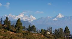 Late morning Nandadevi. (draskd) Tags: nandadevipeak nandakotpeak mtnandadevi chaukori uttarakhand india nature himalayas greathimalayas mountainpeaksofkumaon beautifulindia
