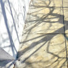 ( Yesterday's shadows ... Tomorrow's tales ) (Wandering Dom) Tags: sidewalk wall urban trees branches california winter earth multiverse being nothingness time life reality dreams existence geometry yesterday shadows tomorrow tales roam wandering