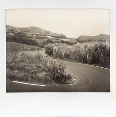 View looking from the garden of our house in the Indian Ocean (Reunion Island). (miroir.photographie) Tags: istillshootfilm filmisnotdead analog instant neworiginals polaroidspectra polaroid