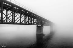Many rivers to cross (tmuriel67) Tags: niebla mist fog bridge river monochrome blackwhite mistery minimalism lines atmosphere