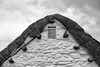 50 Rustic (manxmaid2000) Tags: thatch roof thatched wall white cottage farm village house home building construction beam netting fix tied fasten tradition manx isleofman iom cregneash heritage