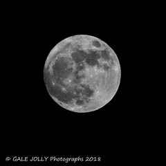 Wolf Moon [Explored] thank you (Gale's Photographs) Tags: wolfmoon supermoon fullmoon moon 1118