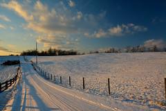 Rummer Road Winter landscape (thoeflich) Tags: sunset snowscape landscape winterscape winterlandscape snowfalls 2018
