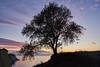 A tree above Cape Drastis - Corfu Island, Greece (phhesse) Tags: sony a7r mkii 7rm2 2470mm f4 zeiss carl fe corfu korfu greece griechenland insel sonnenuntergang sunset mediterraneansea mittelmeer baum schatten silhouette vario tessar sel2470z sky clouds κέρκυρα kérkyra