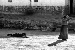 Prosternate (ronniedankelman) Tags: asia china tibet prosternate religion religious buddhism tibetan tibettravel shadow streetphotography streetphoto streetphotos bw bwphoto bwphotography travelphotography travel traveling natgeo nationalgeographic natgeotravel blackandwhite blackandwhitephotography blackandwhitephoto explorechina discoverchina exploretheworld photolovers devoted