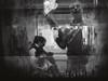 Reflections (Vitor Pina) Tags: street streetphotography scenes shadows streets contrast candid urban urbano rua moments momentos monochrome man men mulher photography people pretoebranco portraits dark