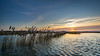 High tide at Crezeepolder (Rob Schop) Tags: wideangle zonsopkomst f56 sunrise sonya6000 water nederland outdoor ridderkerk ochtend morning samyang12mmf20 landscape a6000 hightide handhold crezeepolder