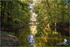 """La Seine à Châtillon-sur-Seine (pont du petit Versailles) """"2017"""" (Christian Labeaune) Tags: 2017 villesvillages christianlabeaune châtillonnais laseine châtillonsurseine chatillonsurseine21400 france côtedorbourgognefranchecomté"""
