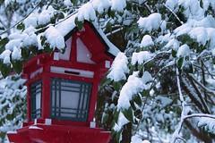 貴船神社(Kifune Shrine) 雪景色-3 (転倒虫) Tags: 京都 日本 貴船神社 雪 雪景色 朝 神社 kyoto japan snow kifunejinjya shrine 冬 winter snowscape 静寂 silence quiet 白 white