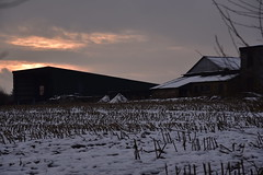 Bauernhof in Wohlde, Stapelholm (2) (Chironius) Tags: stapelholm wohlde schleswigholstein deutschland germany allemagne alemania germania германия niemcy himmel sky ciel cielo hemel небо gökyüzü wolken clouds wolke nube nuvole nuage облака landwirtschaft