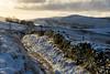 Winter morning at Rowarth (Keartona) Tags: rowarth lantern pike landscape countryside winter morning sunlight dawn drystone wall stonewall path footpath snow cold weather hayfield derbyshire peakdistrict england english hills
