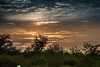 Hiding behind the Bush (kashifats) Tags: pakistan sunset sunlight nature nikond750 nikkor24120 rohtas clouds