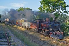 En bajada (l.maicol1) Tags: uruguay montevideo locomotora tren vapor vaporera humo auar via
