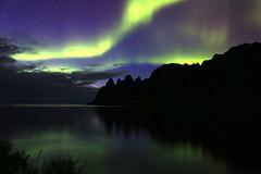 Okshornen Aurora (hapulcu) Tags: northernlights arctic norge noruega norvege norvegia norway norwegen okshornen senja troms aurora automne autumn autunno borealis herbst høst toamna