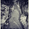 Frozen creek (theviewpoint) Tags: winter snow river creek water bw trees cold canada park white frozen ice nature 溪 加拿大 凍溪 結冰 大自然 冬天 嚴寒 河流 雪林 白雪 黑白照 手機 小米 紅米 redme xiaomi 冰河 freeze