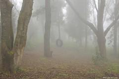 Juguemos en la niebla (Guido De León) Tags: guatemala guatemalaimpresionante quetzaltenango