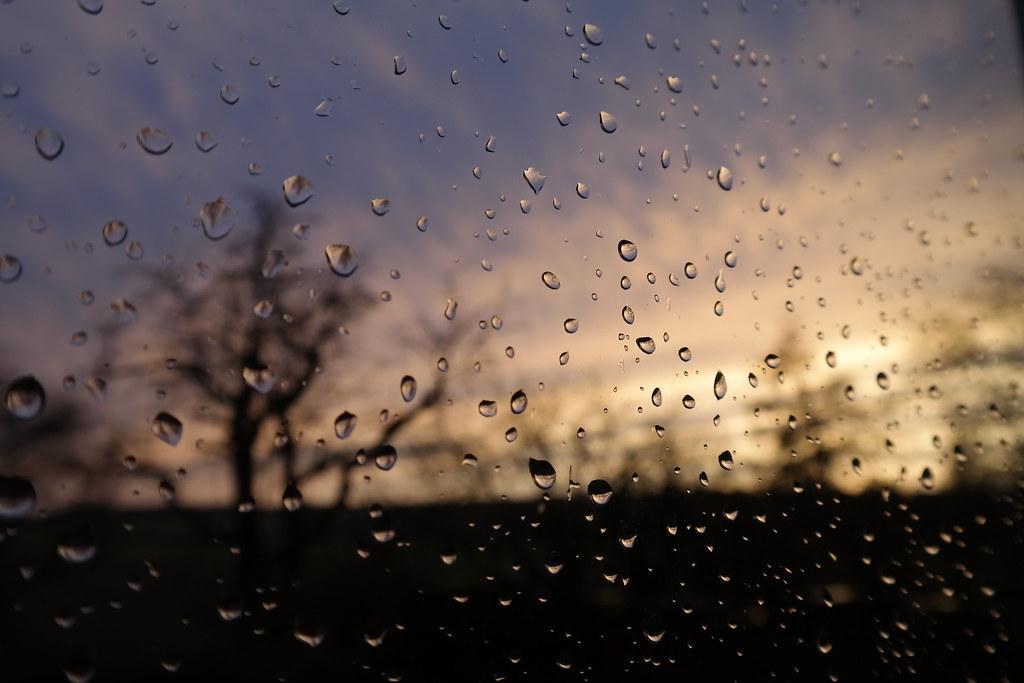 The World\'s Best Photos of regen and tropfen - Flickr Hive Mind