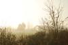 Sunrise in haze (Josiane D.) Tags: smog brume hiver winter landscape land mist haze sunrise france