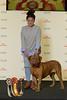 BIR Grupp 2: Dogue De Bordeaux - Athena (Svenska Mässan) Tags: mydog bir birmydog