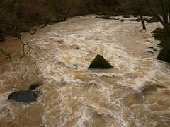 Hochwasser der Prüm (Jörg Paul Kaspari) Tags: irrel irrelerwasserfälle river wild fluss gewässer prüm naturpark südeifel eifel hochwasser