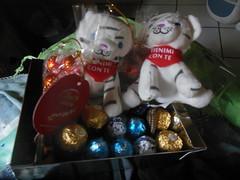 per le bimbe (sprinter77) Tags: regalo gift girlfriends girlfriend tiger pluche peluche pelush regalino gioccolato baci ferrero rocher lindt tigre tigrotto